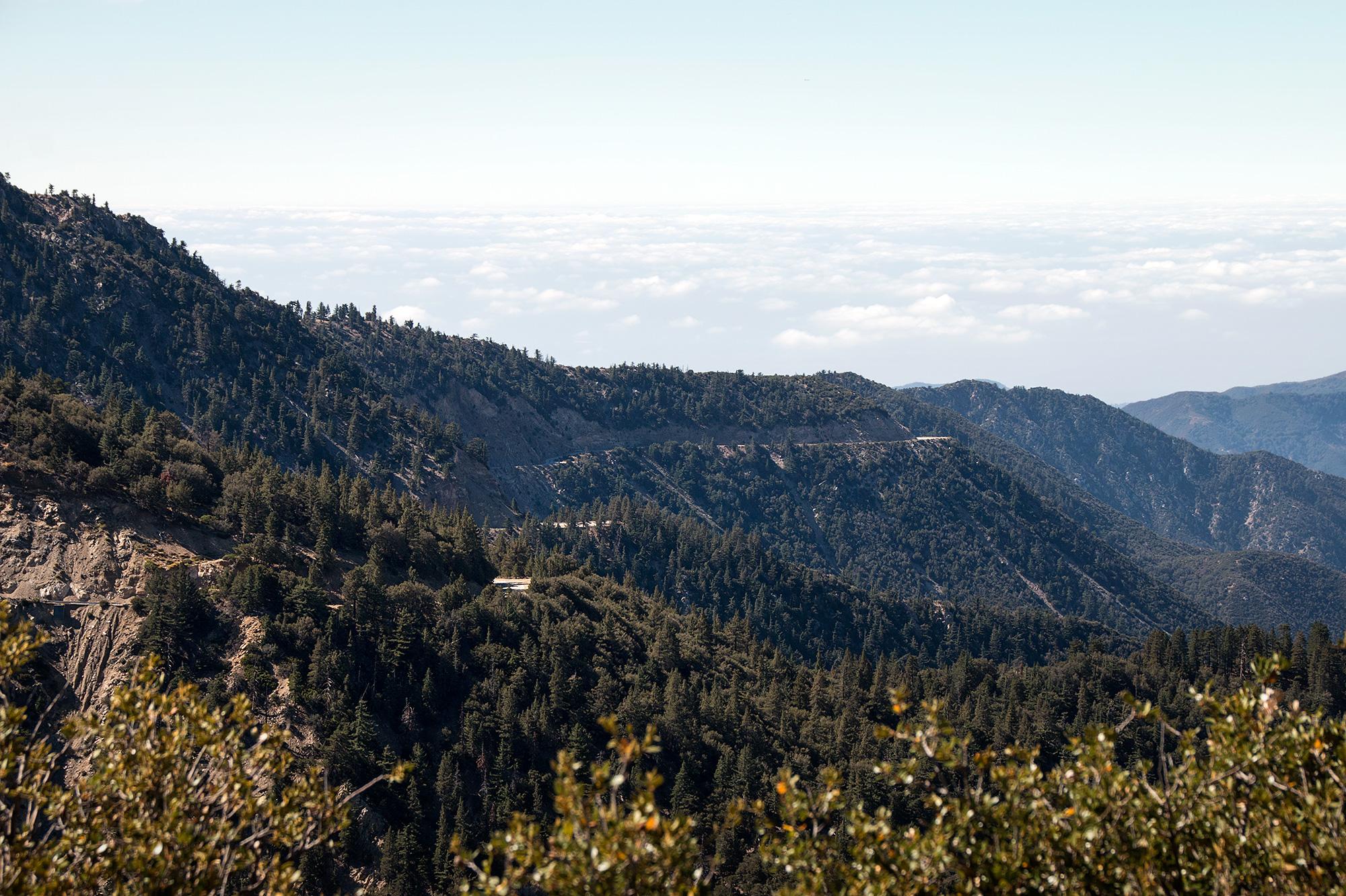 California Wandering 00086