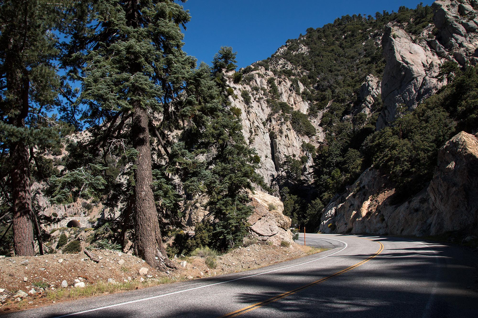 California Wandering 00092