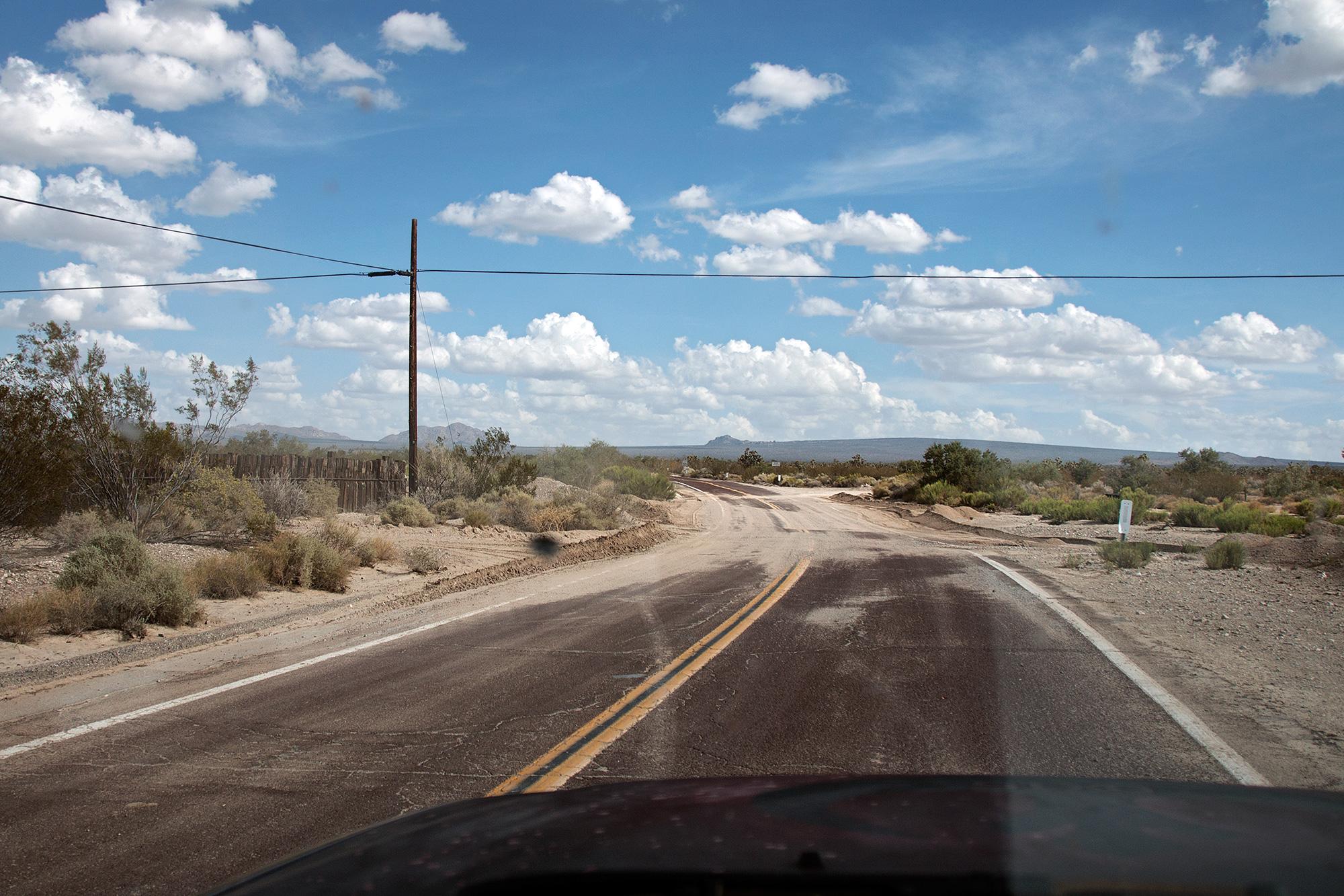 California Wandering 00345