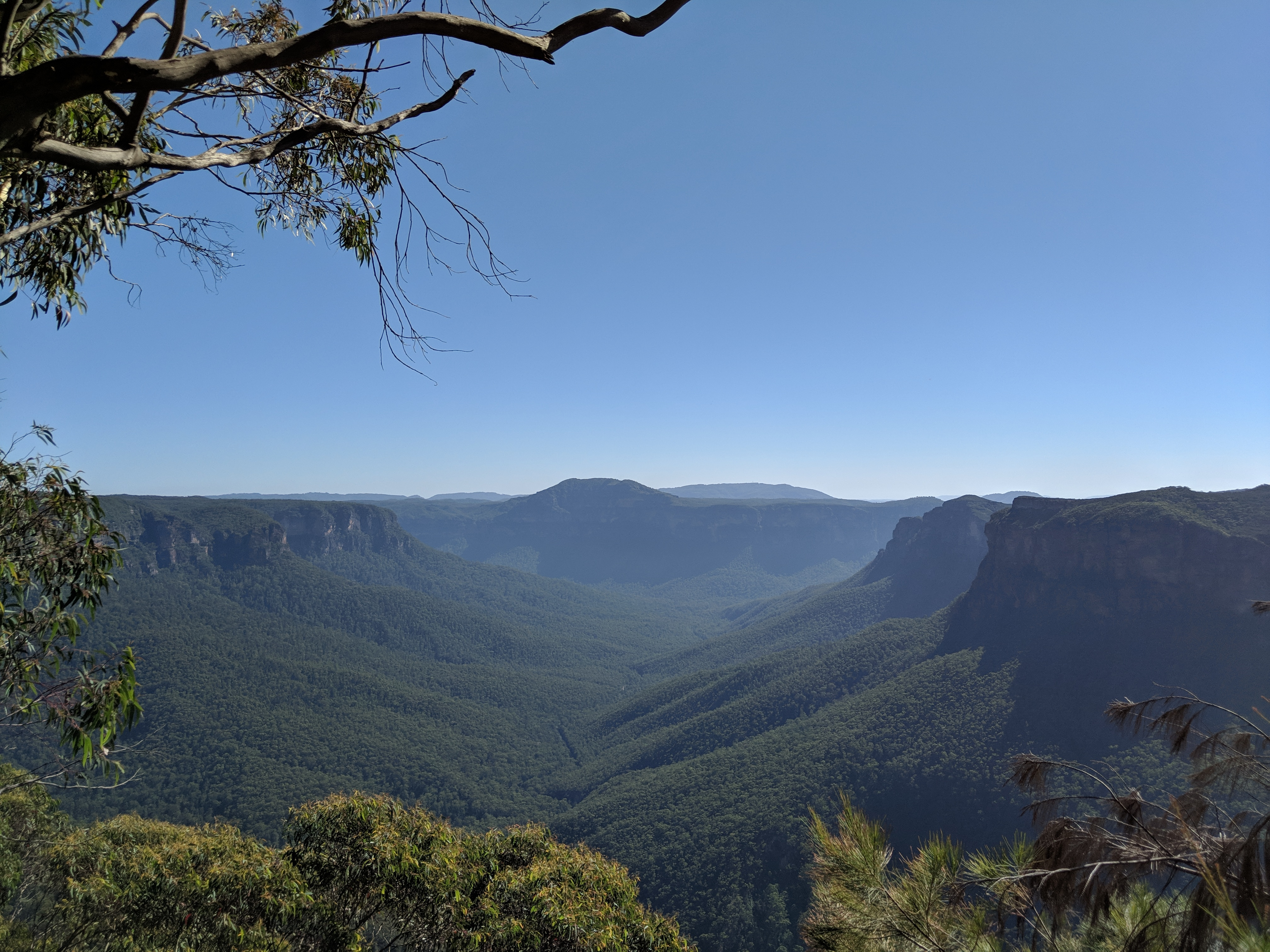 Evans Lookout Blue Mountains National Park